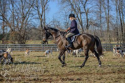 Tarleton, December 27, 2014