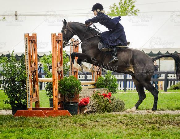 The Hermen Greenberg Memorial Side Saddle Stakes