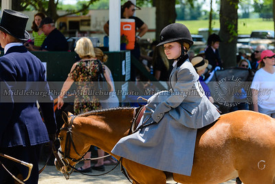 Upperville saturday-532