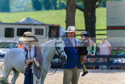 Upperville saturday-351