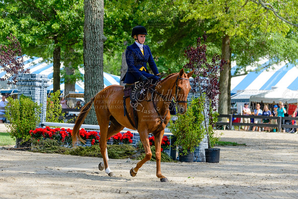 Upperville saturday-870