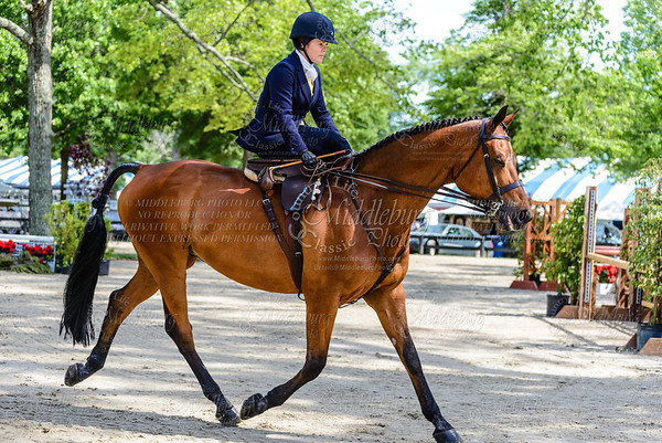 Upperville saturday-213
