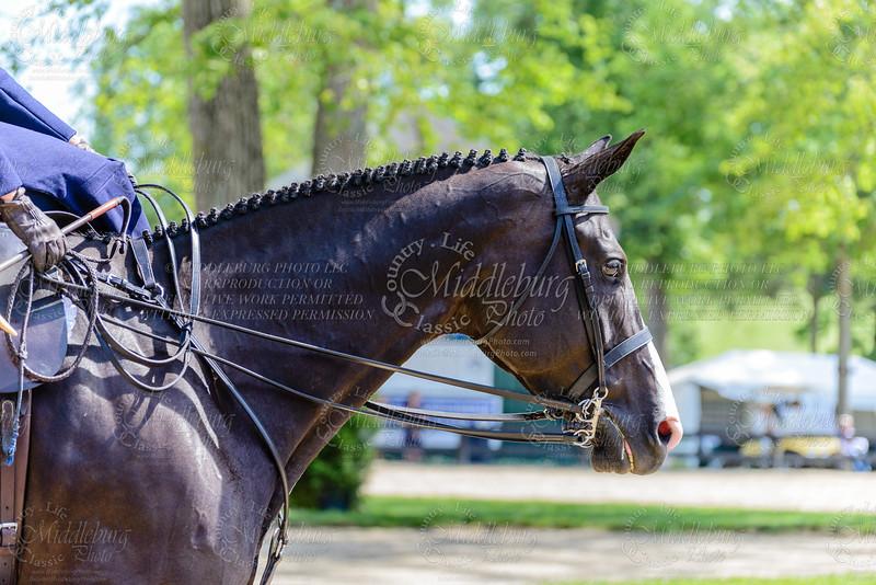 Upperville saturday-838