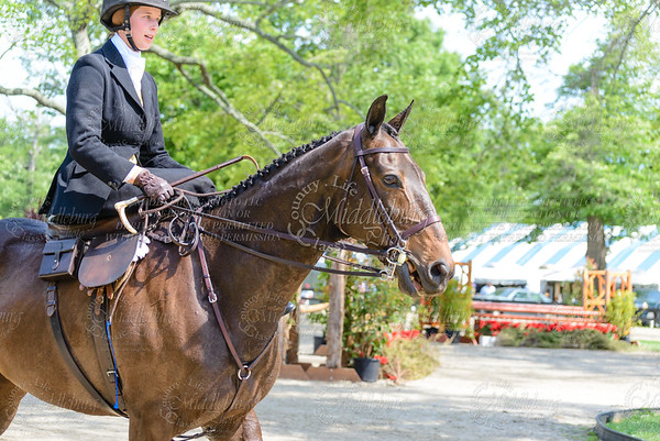 Upperville saturday-577