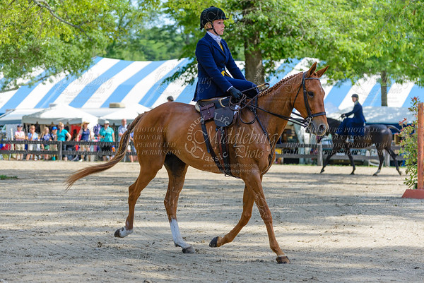 Upperville saturday-596