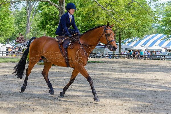 Upperville saturday-848
