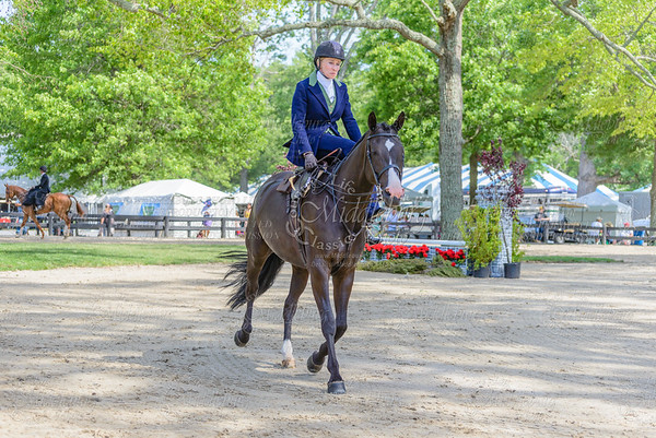 Upperville saturday-446