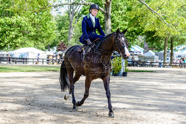 Upperville saturday-8