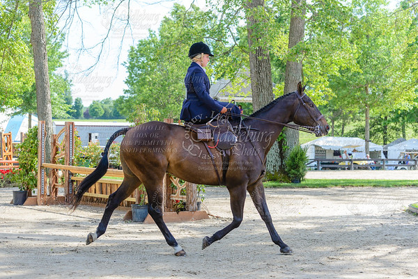 Upperville saturday-17