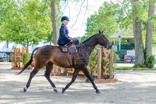 Upperville saturday-657