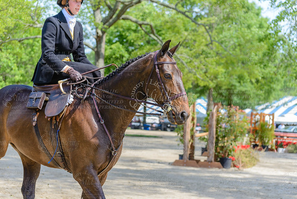 Upperville saturday-306