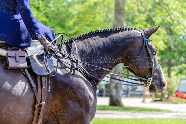 Upperville saturday-513