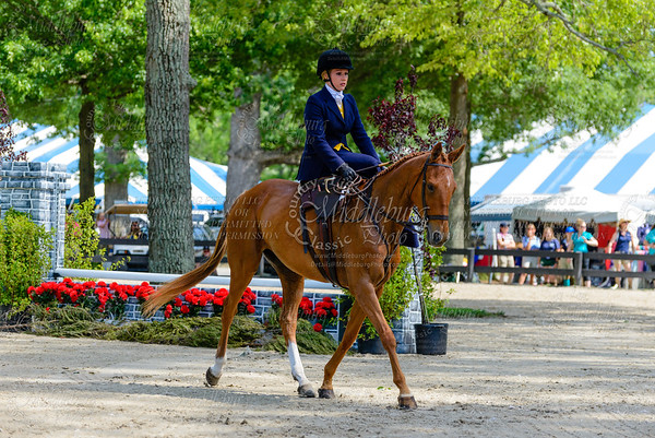 Upperville saturday-128