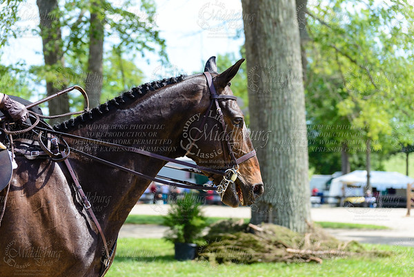 Upperville saturday-285