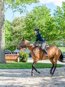 upperville wednesday-24