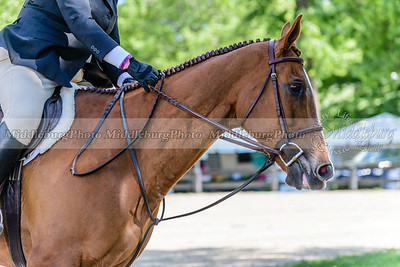 upperville wednesday-35
