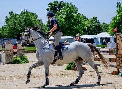 HorseShowkm-73