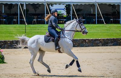 HorseShowkm-102