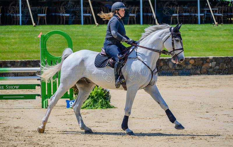 HorseShowkm-101