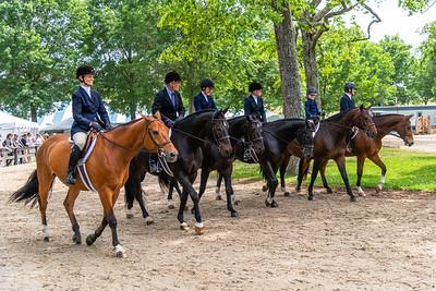 Horse Show-435