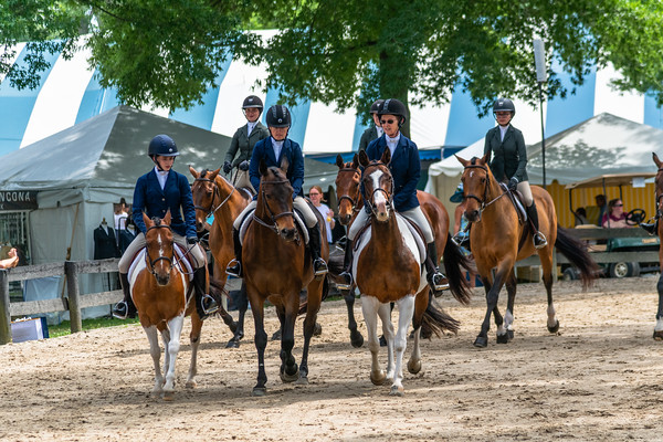 Horse Show-444