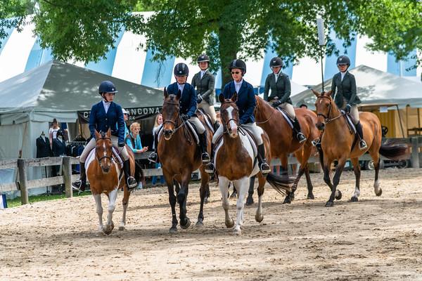 Horse Show-441