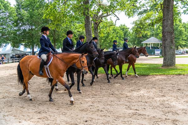 Horse Show-438