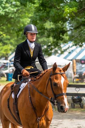 Horse Show-550