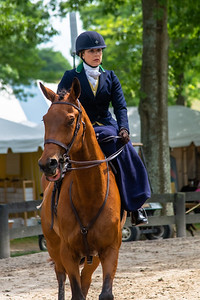 Horse Show-557
