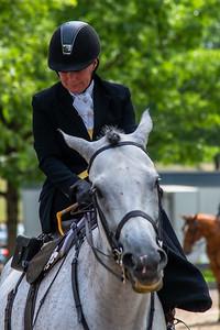 Horse Show-553