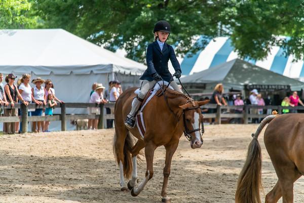 Horse Show-412