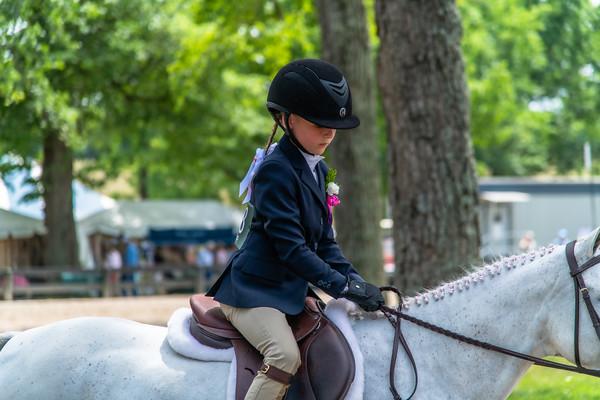 Horse Show-410