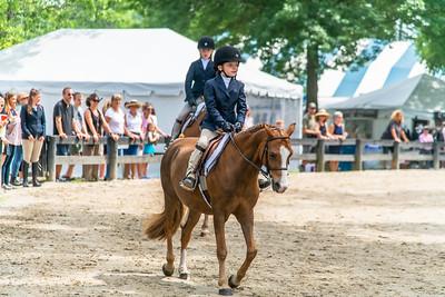 Horse Show-409