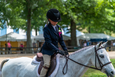 Horse Show-407