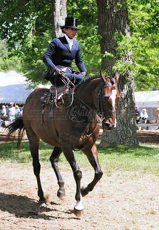 Ladies Side-Saddle Class, UCHS, 2006