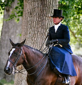 Ladies Side Saddle Class