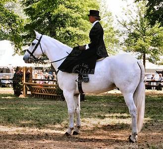 Sir Galahad, 2nd- Ladies Side Saddle Under Saddle, UCHS 06