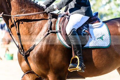 UCHS Upperville Welcome Stakes-17