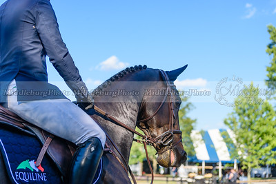 UCHS Upperville Welcome Stakes-13