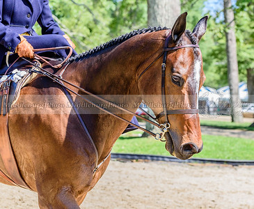 Upperville Saturday-93-2