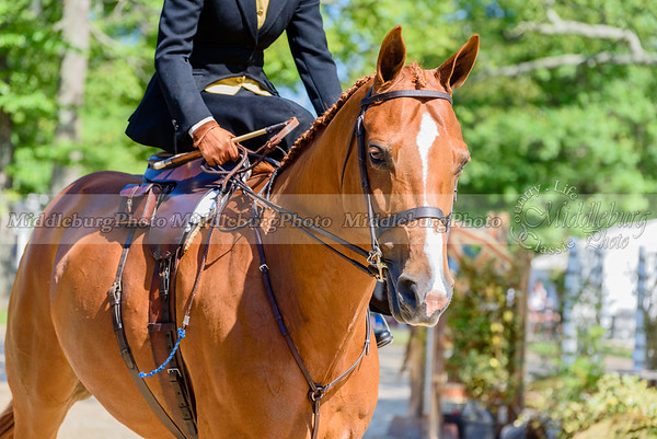 Upperville Saturday-100-2