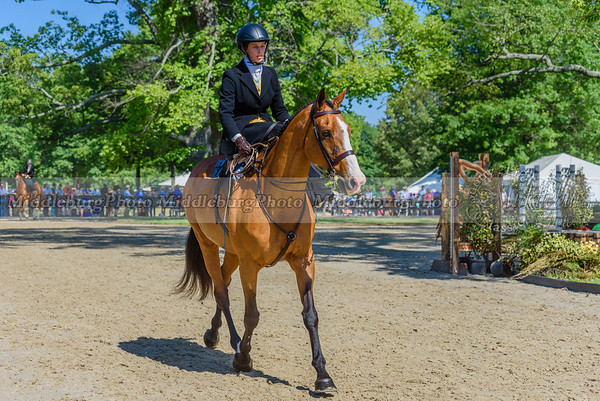 Upperville Saturday-95-2