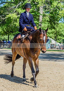 Upperville Saturday-91-2