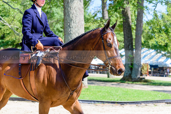 Upperville Saturday-67-2