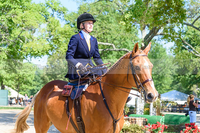 Upperville Saturday-89-2