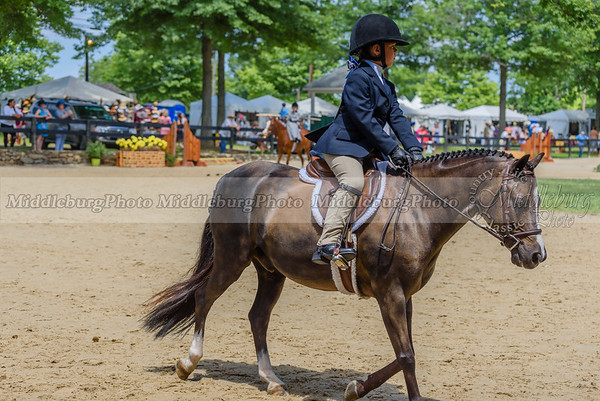 Upperville Saturday-668