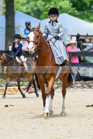 Upperville Saturday-683