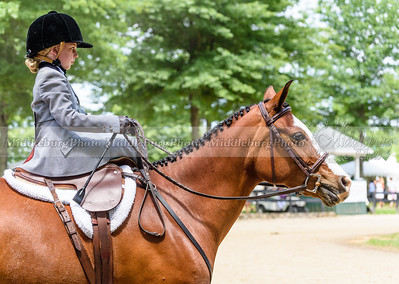 Upperville Saturday-663