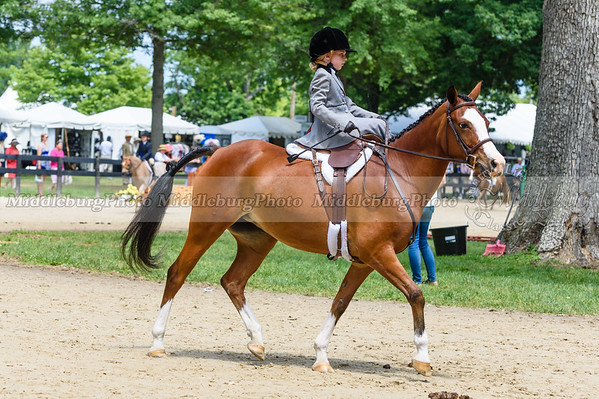 Upperville Saturday-676
