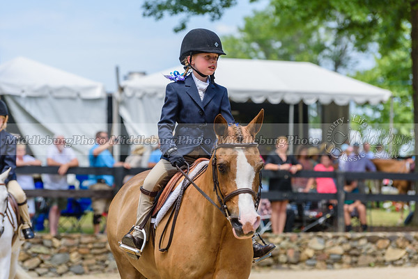 Upperville Saturday-691